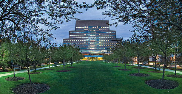 image of the Cleveland Clinic building with a grassy area and trees